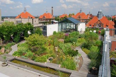 Azotea verde for Jardin en azotea diseno