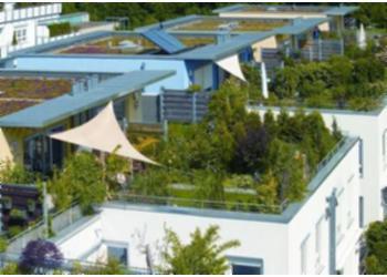 Azotea verde for Diseno de jardines en azoteas